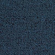 Alfombra azul - Guerrero Oceano