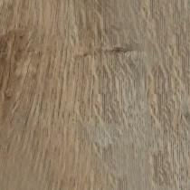 Quattro Fossil Oak