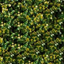 Follaje sintético - Arrayán amarillo