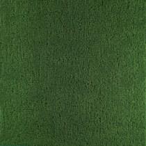 Alfombra verde - Invasor Cesped