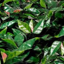 Follaje sintético - Laurel rojo