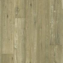 Tasmanian Oak 169M
