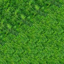 Follaje sintético - Persa
